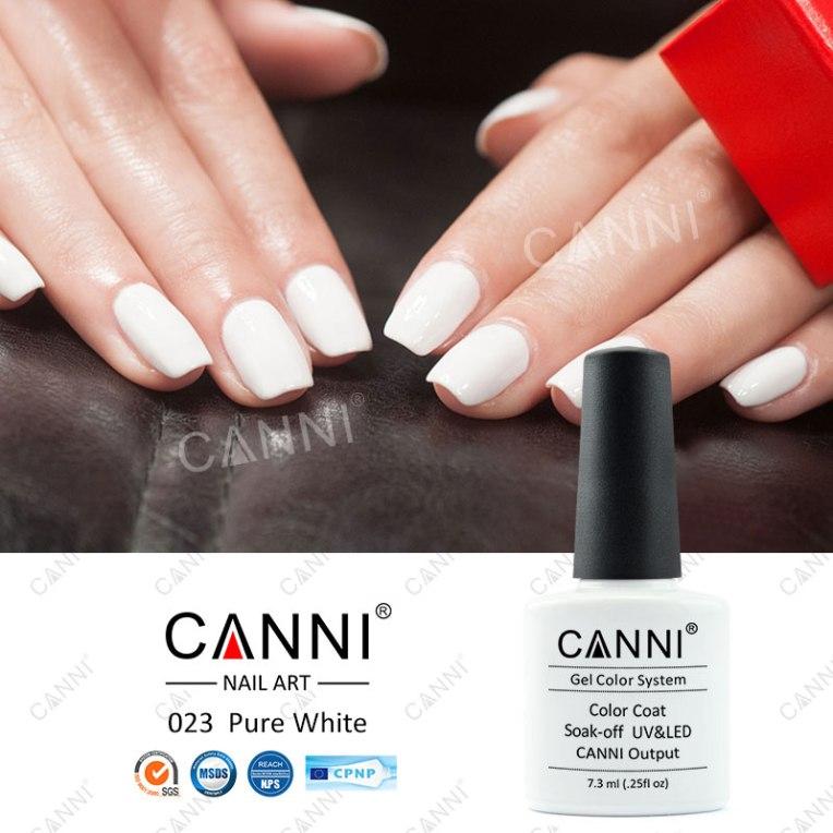 canni-white-shellac